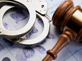 Avanzan casos de investigación liderados por la FECI